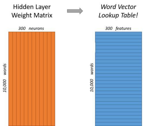 DNN模型训练词向量原理
